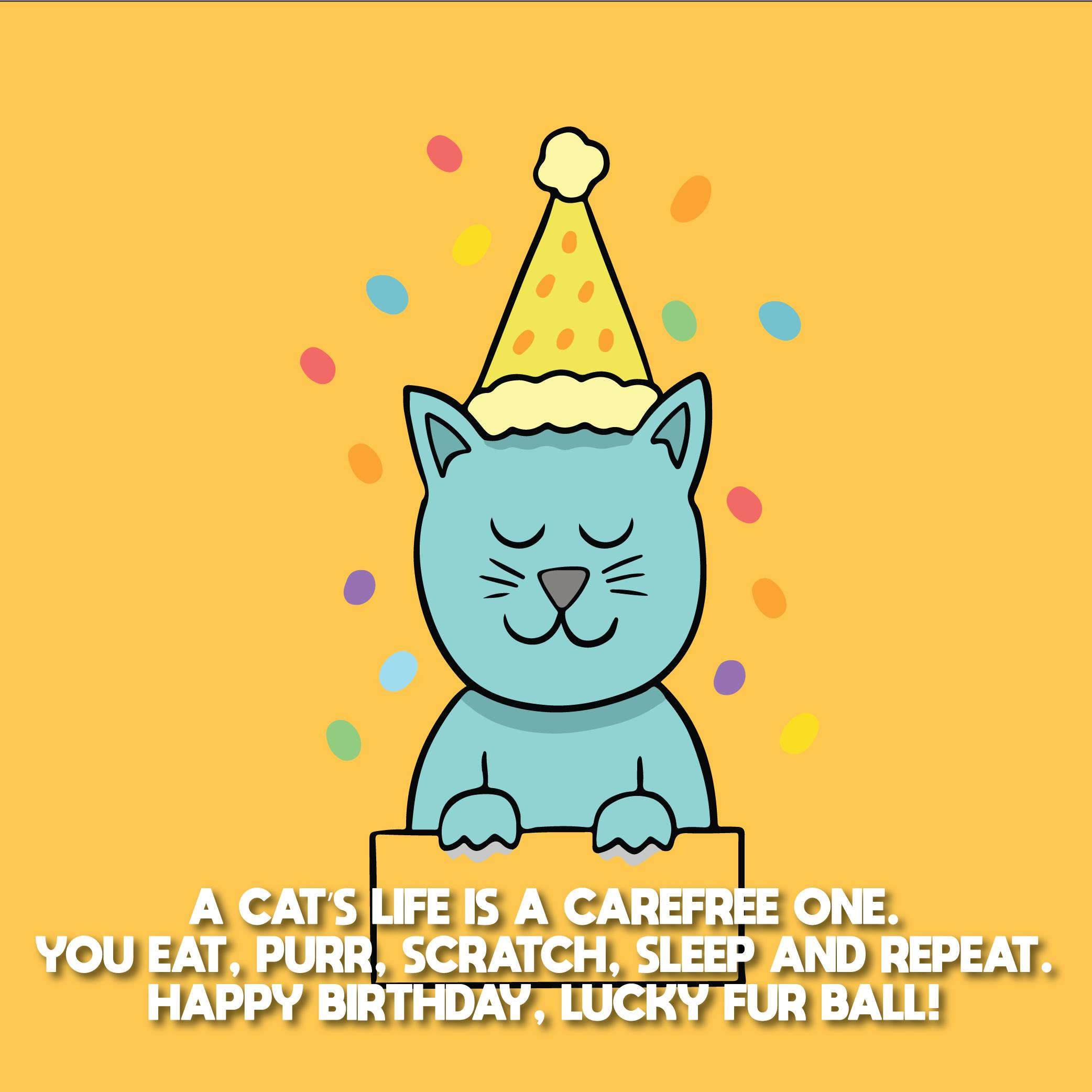 Happy Birthday Cat Wishes For Cats 04